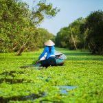 Breathtaking Pictures of Vietnam | The Planet D