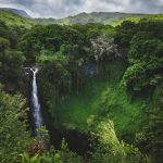 17 Best Hikes in Hawaii You Have To Try in Your Life